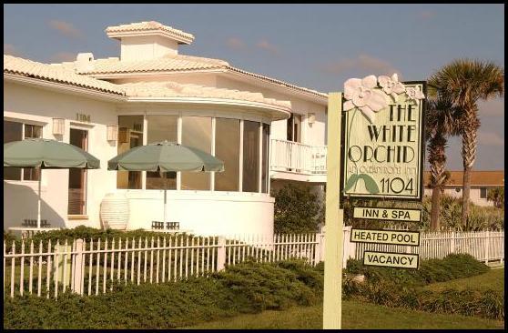 White Orchid Flagler Beach Fl