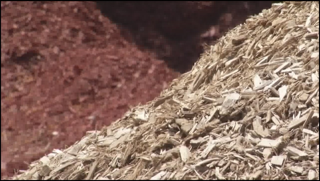Wood Chips Vs Mulch