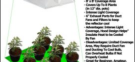 1000 Watt Grow Lights