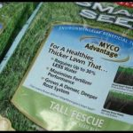 Best Grass Seed For Sandy Soil