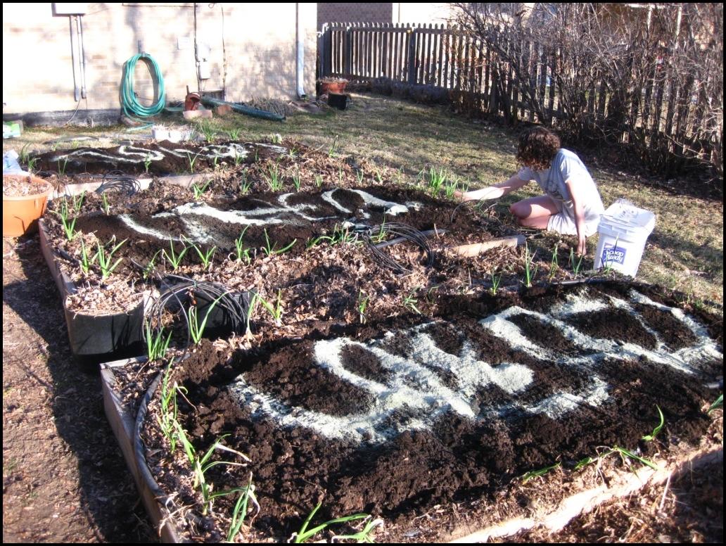 Best Soil For Vegetable Garden