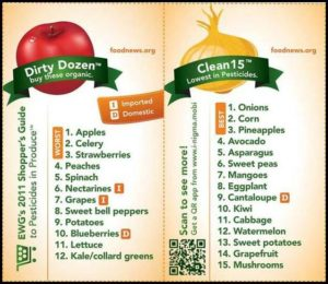 Fruit And Vegetable Fast