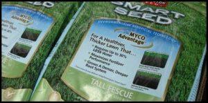 Grass Seed For Sandy Soil
