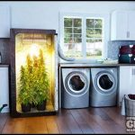 Grow Box For Weed