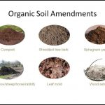 How To Amend Soil