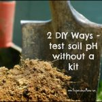 How To Test Soil Ph At Home