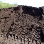 Loam Soil For Sale
