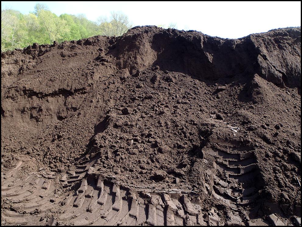 Loam Soil For Sale