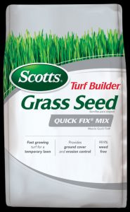 Quick Growing Grass Seed