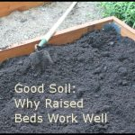 Raised Bed Gardening Soil