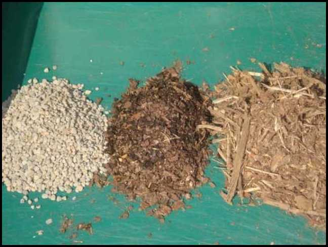 Soil Amendments For Clay