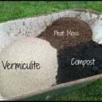 Soil Mix For Raised Beds