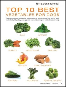 Vegetables That Are Good For Dogs
