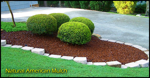 Best Mulch For Landscaping