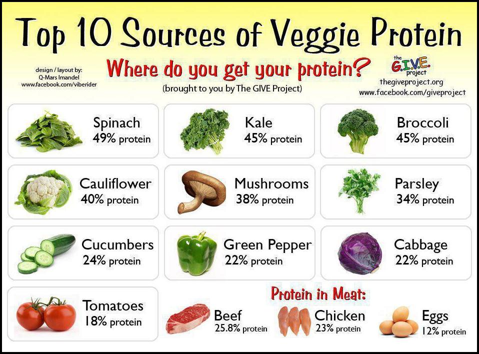 Best Vegetables For Protein