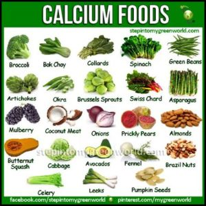 Fruits And Vegetables High In Calcium