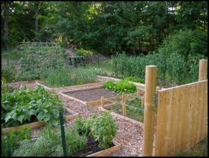 Raised Vegetable Bed Designs