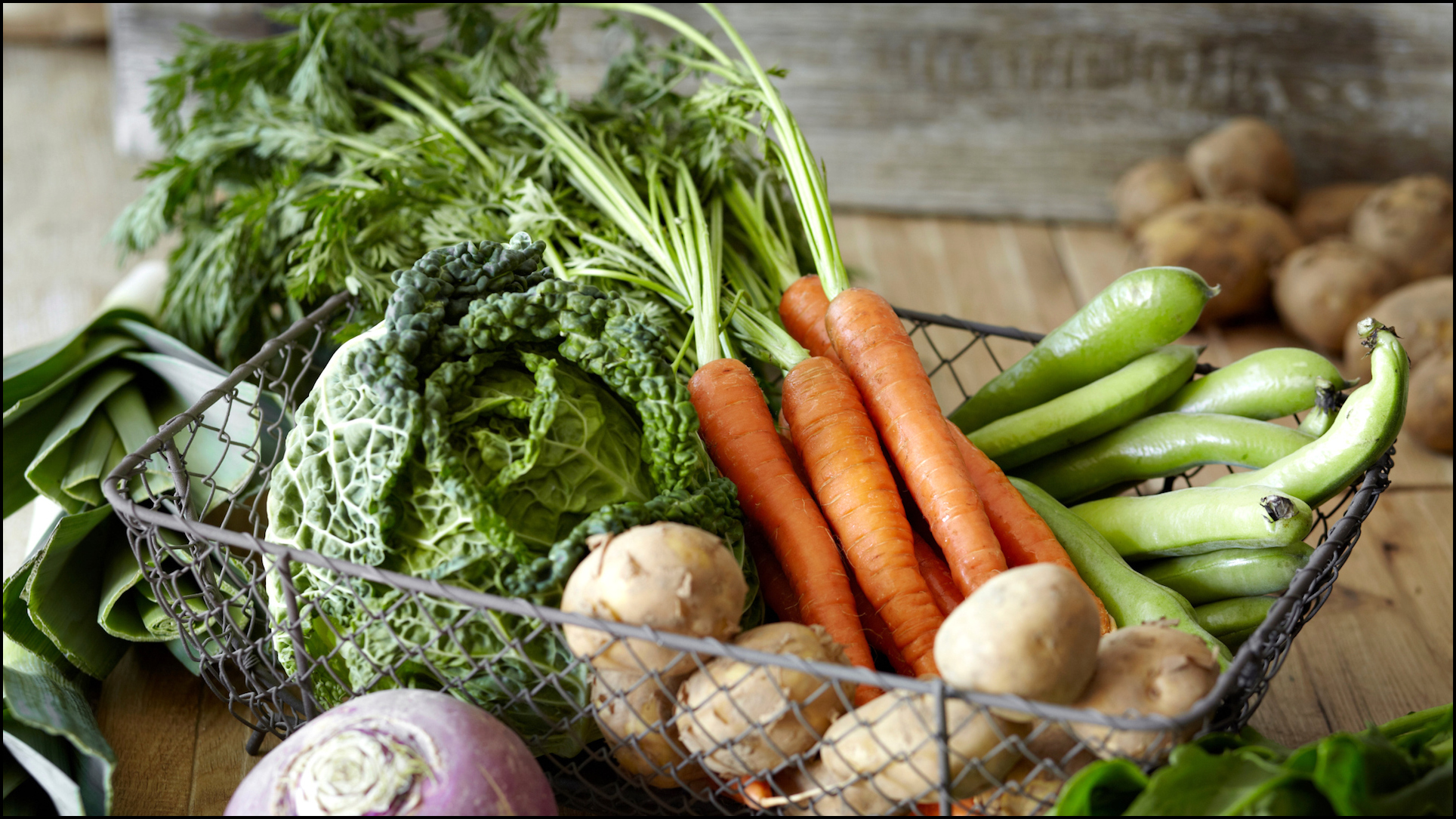 Vegetables You Can Grow Indoors