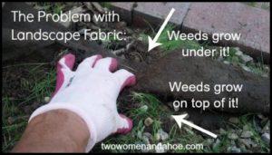 Weed Barrier Under Mulch