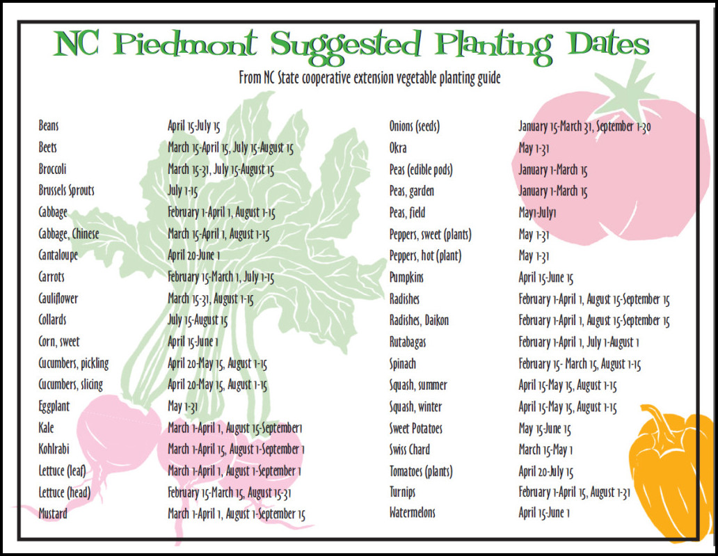 When To Plant Vegetables In Nc