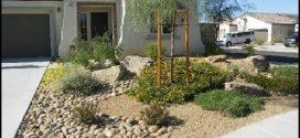 Do It Yourself Desert Landscaping