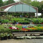 Landscaping Stores Near Me