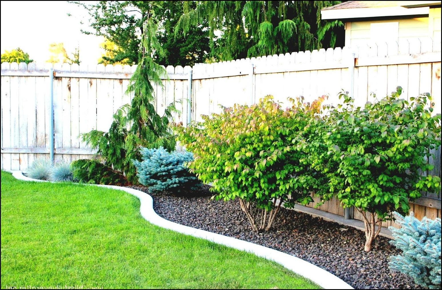 Easy Backyard Landscaping Ideas For Beginners In Square: Easy Landscaping Ideas For Beginners