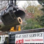 R And R Tree Service