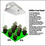 1000 Watt Grow Lights