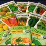 Best Place To Buy Vegetable Seeds