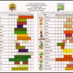 Fruits And Vegetables By Season