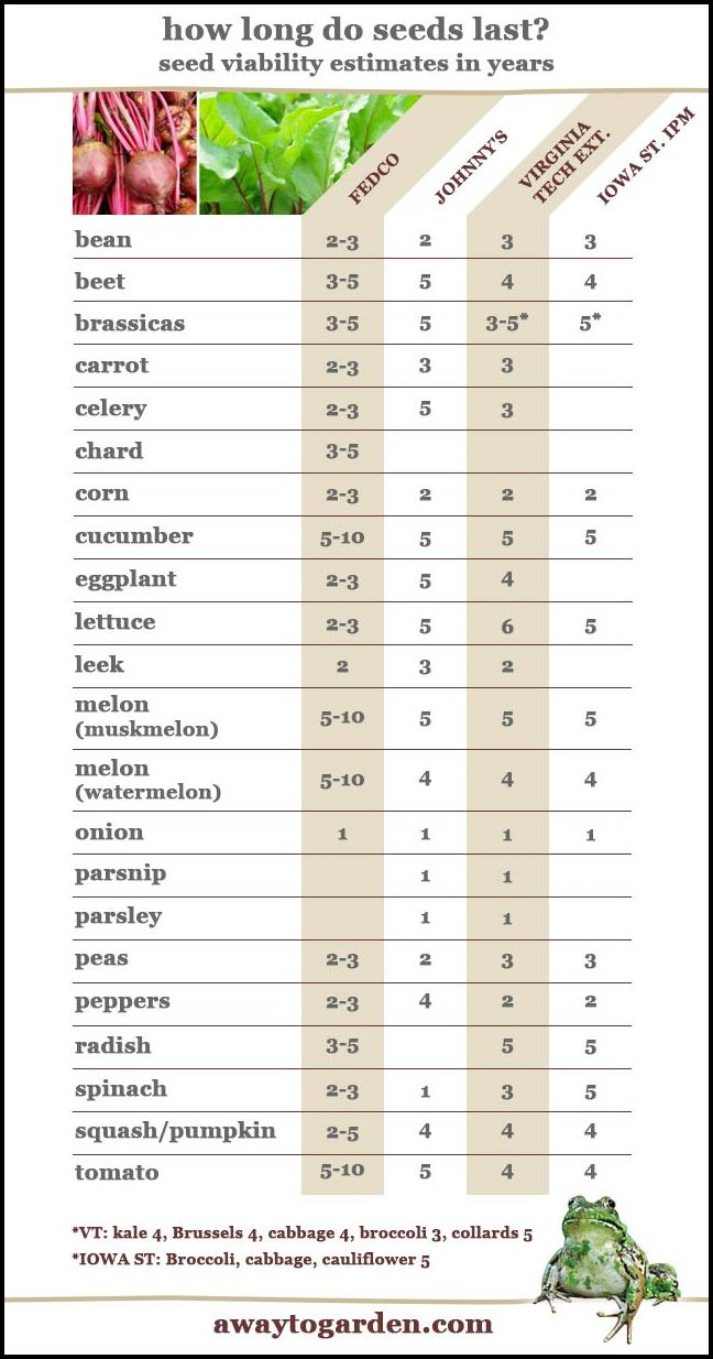How Long Do Vegetable Seeds Last The