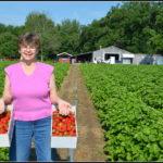 Vegetable Farms Near Me